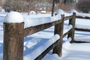 fencing loveland