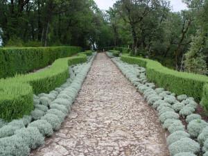 landscape design Loveland