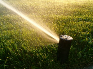 turf irrigation systems Loveland